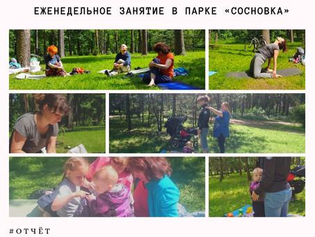 Еженедельное занятие в парке «Сосновка»