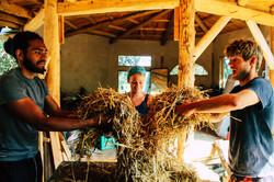 students-mixing-straw-building-terra-alt