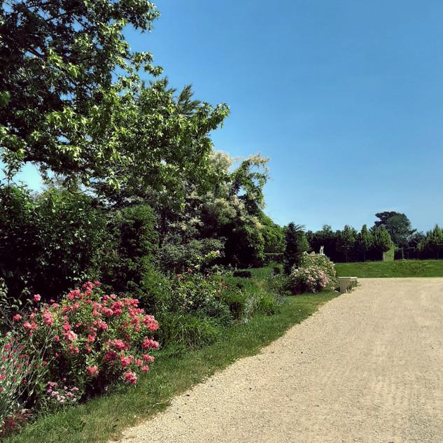 Jardin du roi, Versailles