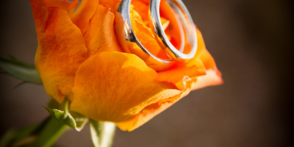 Wedding ring workshop by Sarah Bradley Designs
