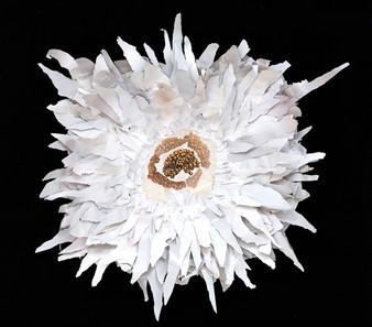 """""""White Flower"""" by Jaime Becker"""