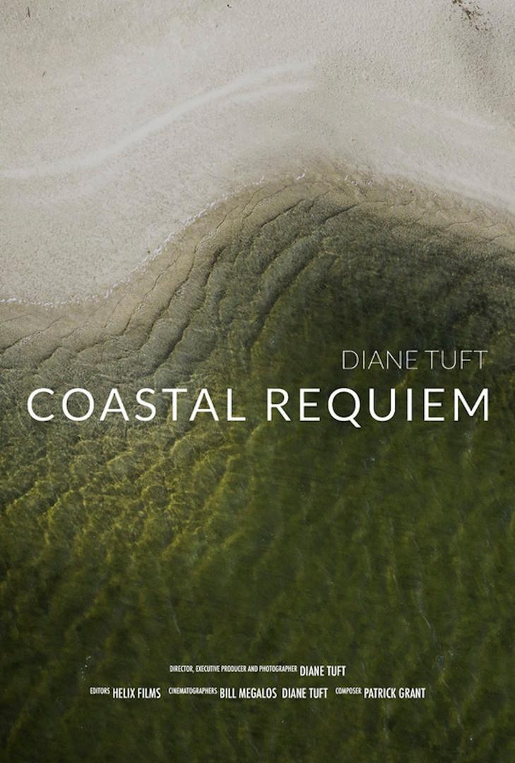 Coastal Requiem, 4' USA