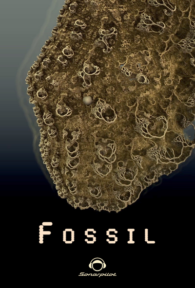 Fossil, 11' CH