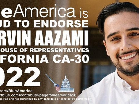 The San Fernando Valley Has Evolved And Deserves Evolved Political Leaders-- Meet Shervin Aazami