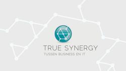 True Synergy
