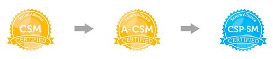 A-CSM Career Path
