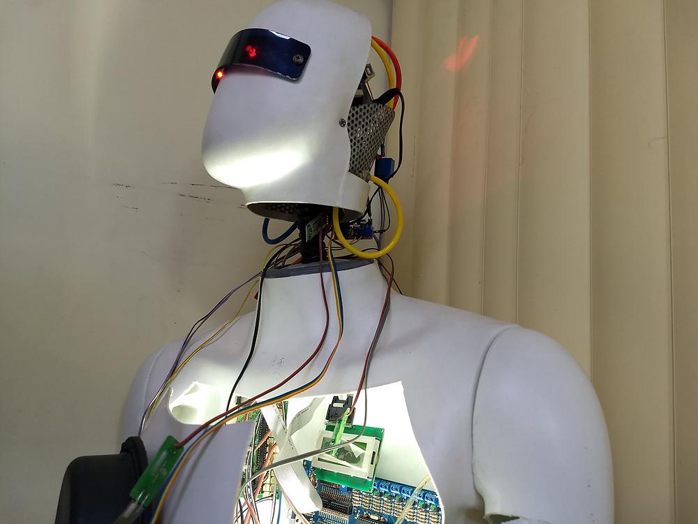 Internauta1 - Robótica Colaborativa