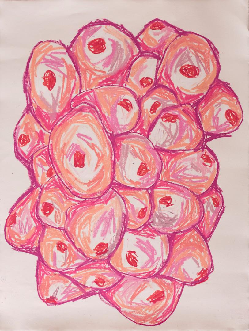 Fruta  .  2019 LUISA CALLEGARI