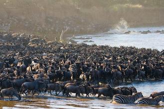 Les droits de la nature, un concept ancien et émergent en Afrique
