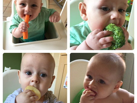 Beginning Baby-Led Weaning