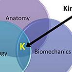 kinesiology kalgoorlie.jpg