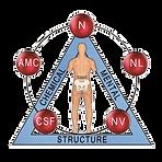 kinesiology kalgoorlie