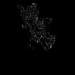 nicole-nelson-beautyv2-black.PNG