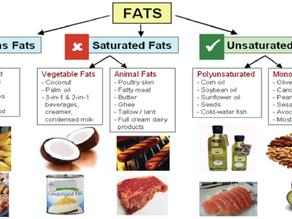 Fats: Friend or Foe?