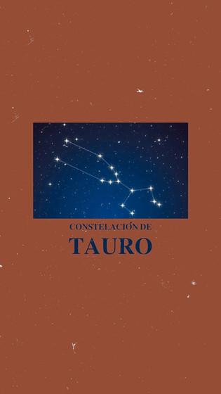 Tauro Burruzo 1.jpeg