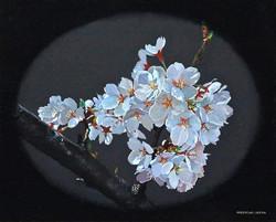 池田誠史-3