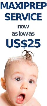 Low price Maxiprep service