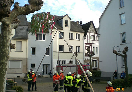 Maibaum_PHOTO-2018-04-29-15-46-23.jpg