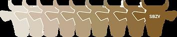 210203_Braunvieh-Logo.png