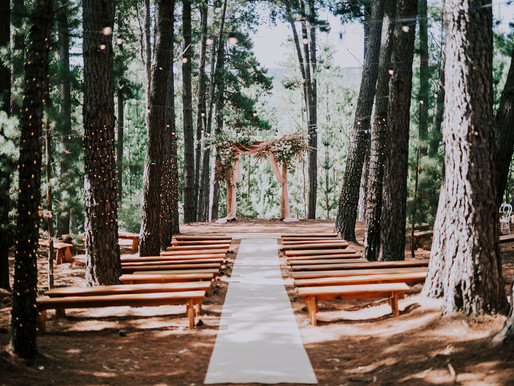 7 ideas for an eco-friendly wedding