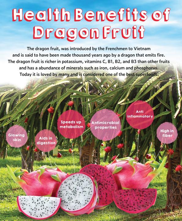 dragonfruit_brochure22.png