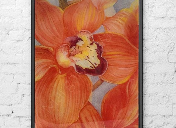 Orchid Original Watercolor Painting