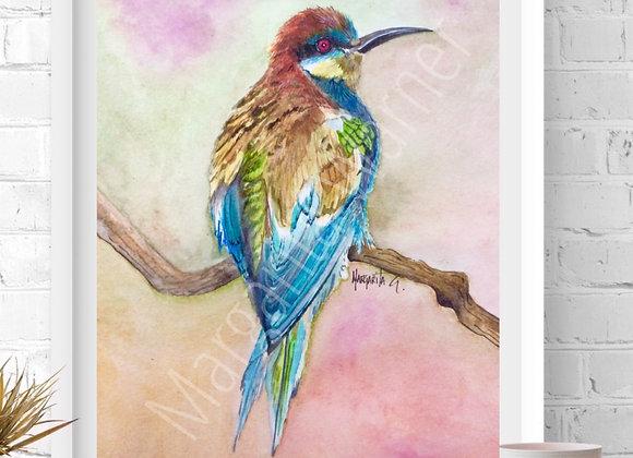 Bee-eater Bird Watercolor Art