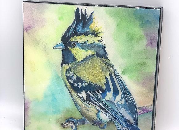 "Blue singing bird art 8x8"""