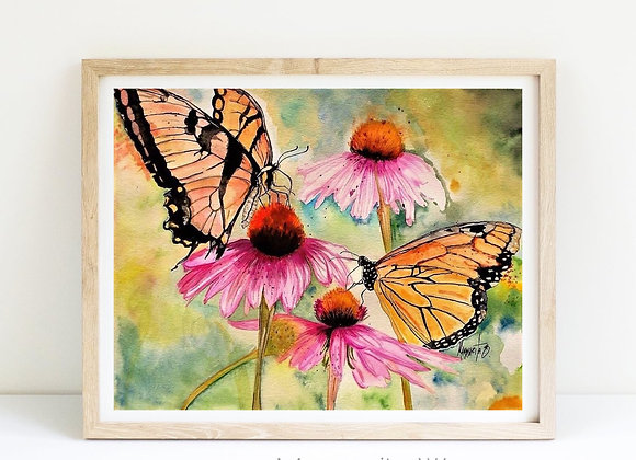 Butterflies and coneflowers