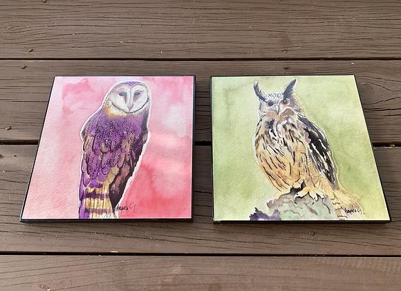 """2x Owls Wall Art / Wood Frame 8x8"""" / Farm and Horn Owl."""