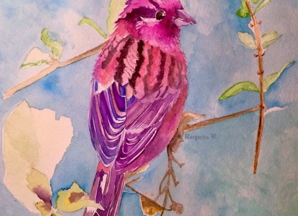 Purple finch bird Watercolor painting