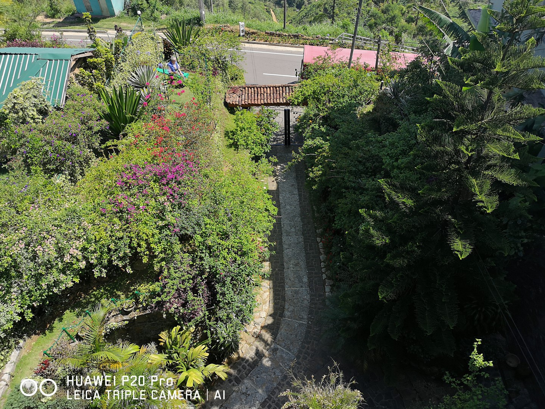 Overview front garden