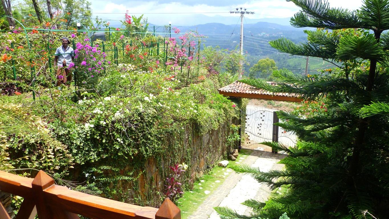 Front garden left