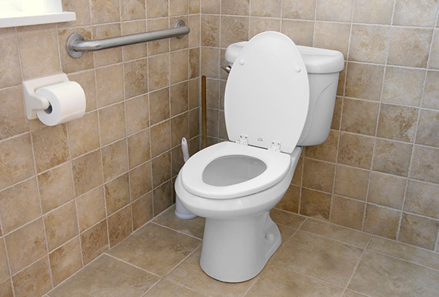 Universal Design Toilet