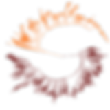 aylward_logo.png