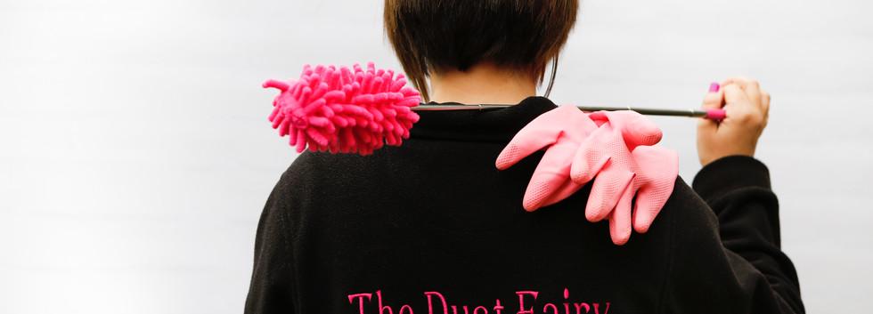 Dust Fairy - Fizzy Robot Photography55.j
