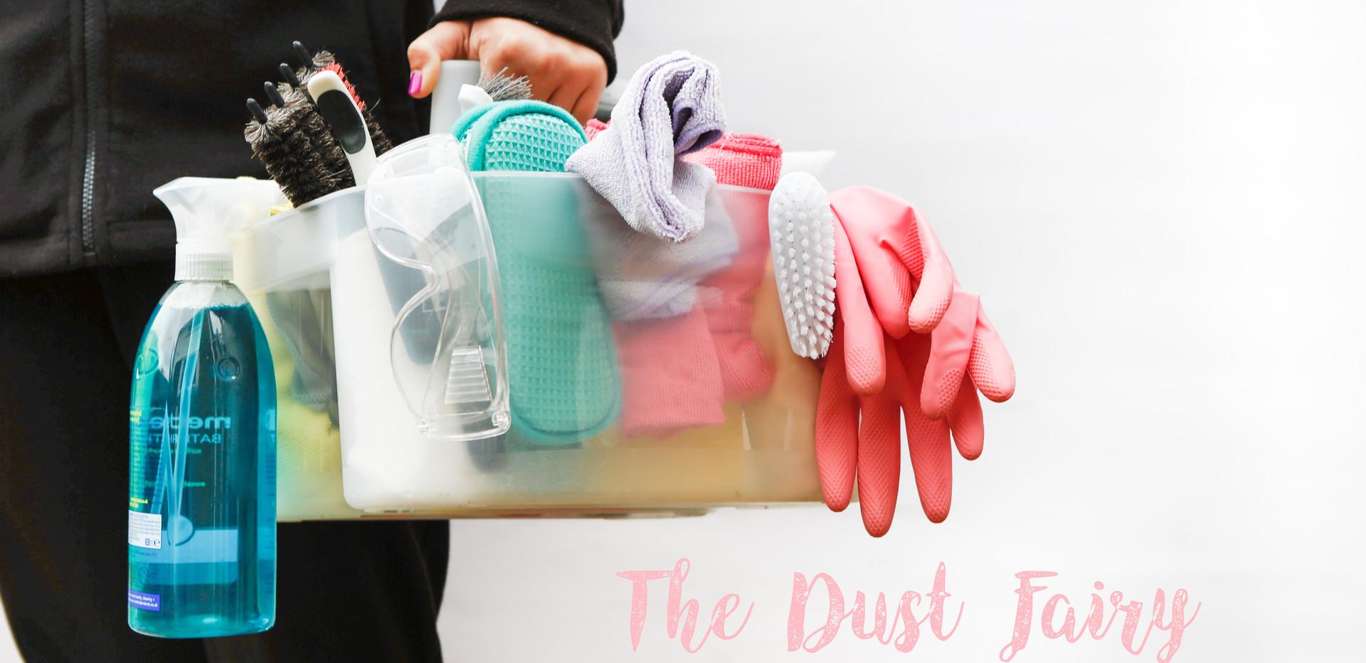 Dust Fairy - Fizzy Robot Photography78.j