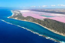 Pink Lake.jpg