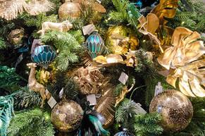 Christmas Jungle-1.jpg