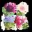 Thumbnail: Set Perennial