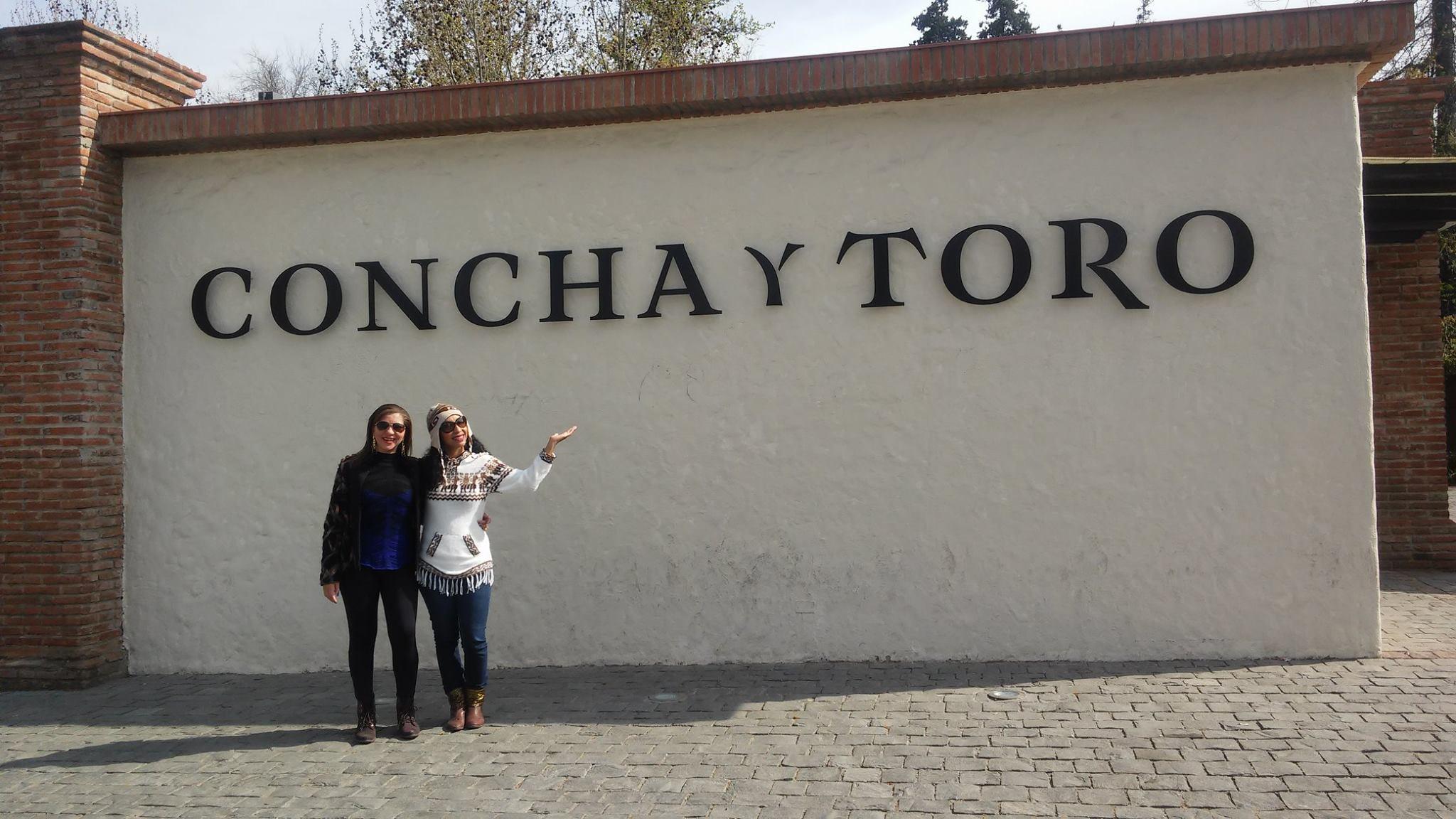 Vinicola Concha y Toro Vale do Maipo