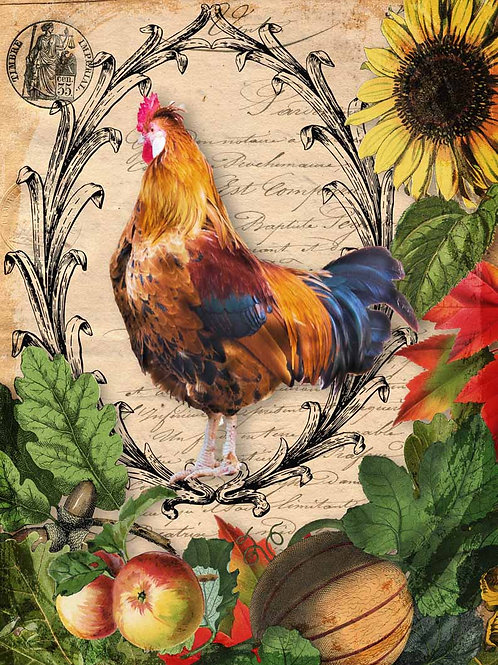 Autumn Rooster With Harvest Vegetables, Decoupage Queen Rice Paper