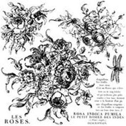 Rose Toile, IOD Decor Stamp