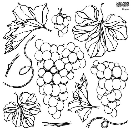 Grapes, IOD Decor Stamp