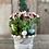 Thumbnail: Spring Peat Pot Kit & Video Workshop QR Code