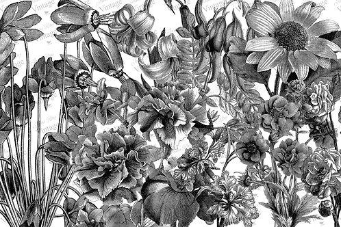 "Black and White Floral, JRV Decoupage Paper, 30"" x 20"""