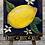 "Thumbnail: Mini 4"" Canvas Lemon Citrus Painting, DIY Paint"