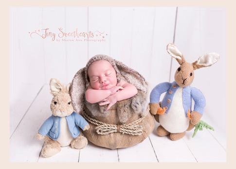 Birmingham Newborn Photographer