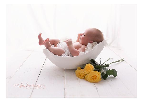 Maternity Photographer `birmingham, Bump Casts Birmingham