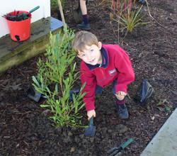Owairoa School - Kane planting Paper4Trees 2014